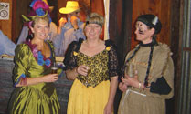 Medieval, Hawaian and Wild West Themed Events