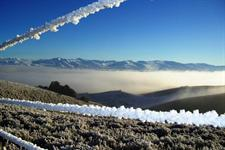 Hoar Frost and Valley Mist - Central Otago Winter