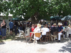 Local 'foodies' have stalls alongside each wine tasting stall and you can sample many regional delicacies