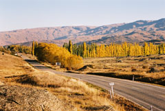 Fruitlands, Central Otago