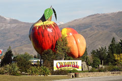 A bustling service town, Cromwell has a vibrant, growing economy