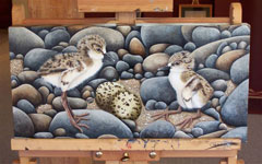 Her paintings of chicks and stones are painted on canvas
