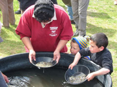Gold panning at Bendigo