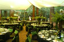 Event Impressions - an outdoor function like no other!