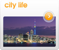 City Life Image Gallery