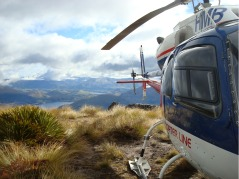 The Helicopter Line, Te Anau, Fiordland, New Zealand