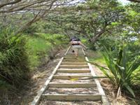 Great Walking Tracks across the Islands