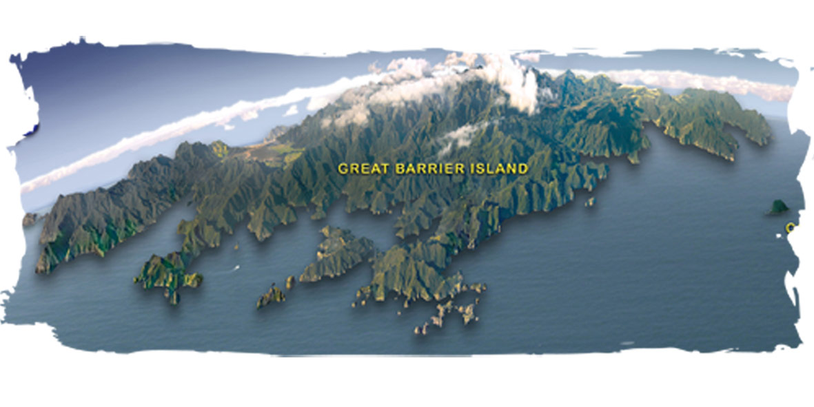 Great Barrier Island New Zealand  city images : Goat Island Dive & Snorkel | Dive Great Barrier Island | Auckland, New ...