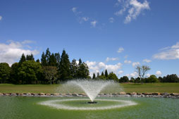 Fountain and pond at Te Puke Golf course