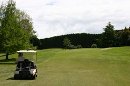 Golf carts and other motorised transport can be used at anytime for casual rounds of golf.