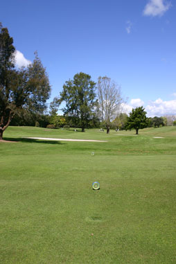 A tee at Golf Te Puke