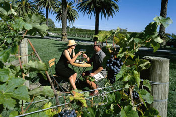 Wine, The Nautilus Napier, Picture supplied by Tourism Hawkes Bay