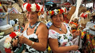 Cook Islands Cultural Packages