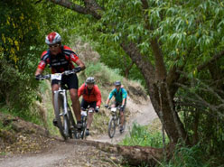 South Canterbury Mountain Biking & Cycling