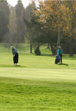 Ladies Playing Golf - ADBT