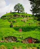 Auckland to Hobbiton Movie Set Private Luxury Tours from Auckland New Zealand