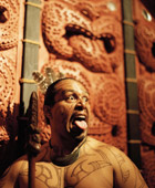 Auckland Maori Tours Full Day Extra