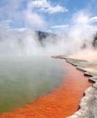 Auckland to Rotorua Private Luxury Tour - Cruise Shore Excursions from Auckland New Zealand