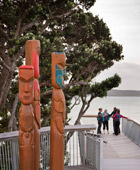 Auckland Tours Half Day City Highlights