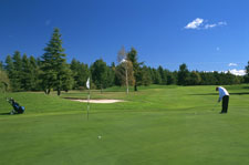 Ashburton Golf Course - Ashburton District Tourism