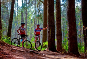 Turangi Holiday Park Accomodation Activities biking