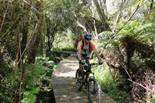 Cycling the Waikato River Trails