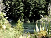 The Mighty Waikato River