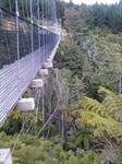 Mangarewa Suspension Bridge