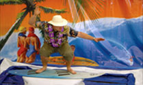 Hawaian Themed Events
