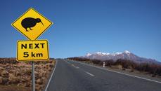 Kiwi Sign NZ