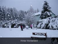 Winter Wonderland at Camp