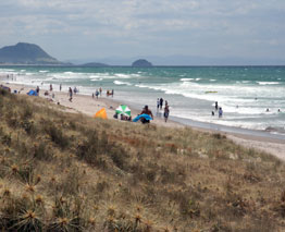Mount Maunganui and Ohope Beaches offer surf schools for beginners