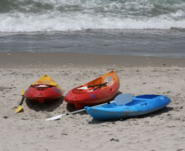 Sea Kayaking is extremely popular in the Bay of Plenty for obvious reasons
