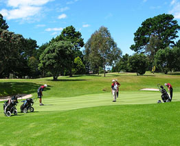 Enjoy an exception variety of 11 golf courses, all located within the sunny Bay of Plenty