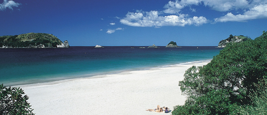 Aroha Luxury Tours - Scenic highlights tour - perfect beaches