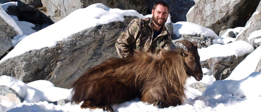 Aroha Luxury Tours - New Zealand Big Game Hunting - Elk hunting