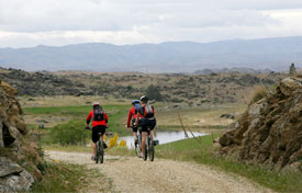 Otago Central Rail Trail Cycling