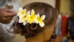Flower arrangement in the Hair