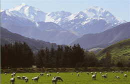 Stunning New Zealand Scenery