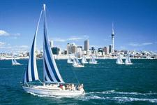 Explore Auckland by yacht