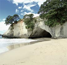 New Zealand's pure natural environment is so attractive to visitors from other countries