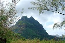 Mystical and Mountainous