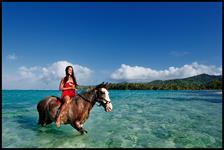 horse riding/ ballade à cheval - LA PETITE FERME