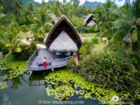 Premium Bungalows, Lake and Garden/ Bungalow Premium, Lac et Jardin