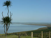 Kaipara Harbour