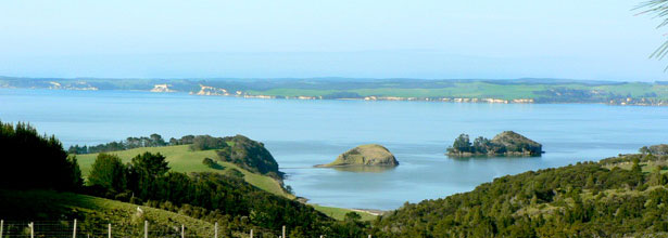 Enjoy the twin coast discovery route from Matakohe Top 10 Holiday Park