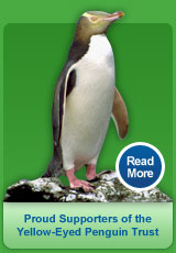 Proud Supporters of the Yellow Eyed Penguin Trust, Read More