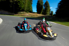 Raceline Karting Group Race