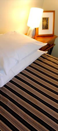 Beachfront accommodation at Orewa Beach Top 10 Holiday Park