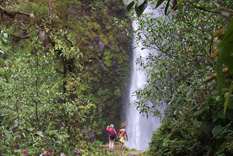 Magical Papua New Guinea nature treks